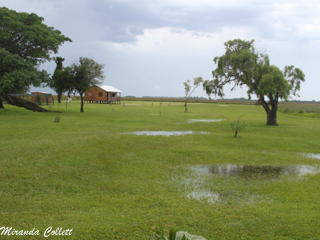 Torrential rain at Reserva Don Luis